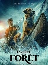 L'Appel de la forêt: Alliant prises de vues réelles et animation, L'Appel de la forêt raconte l'histoire de Buck, un chien au grand coeur