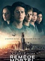 Le Labyrinthe: Quand Thomas reprend connaissance, il est pris au piège avec un groupe d'autres garçons dans un labyrinthe géant dont le plan est modifié chaque nuit.