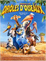 Drôles D'oiseaux (3D)